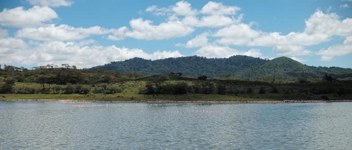 Arusha_National_Park-_Flamingos_at_Momella_Lake_2.jpg